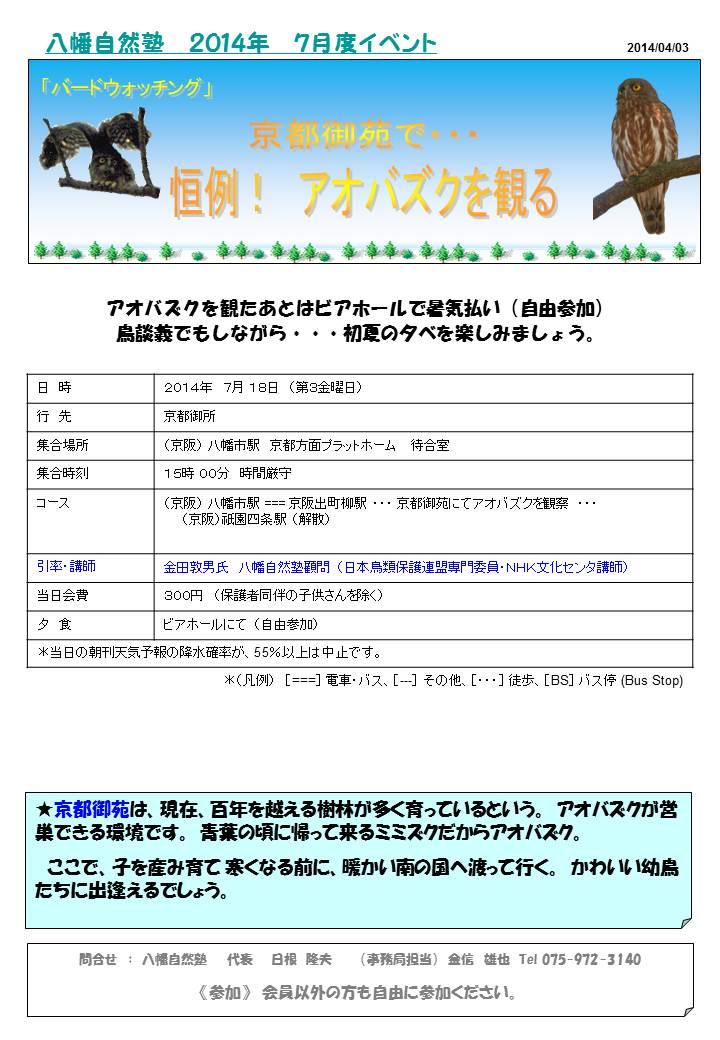 京都御所で ・・・ 恒例! アオバズクを観る