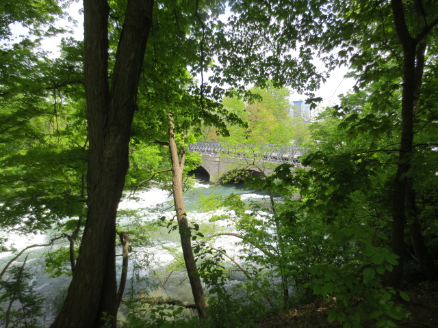 アメリカ滝への道 (7景-3) ニューヨーク州 アメリカ Niagara Falls, State of Newyork, USA 2013/05/22 Photo by Kohyuh