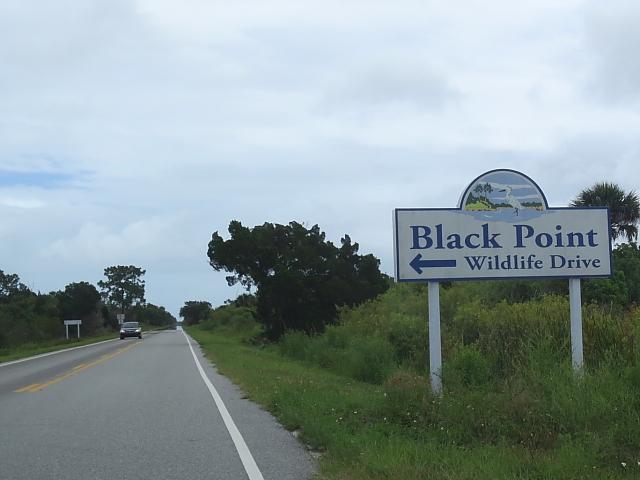photo1 ブラック・ポイント・ドライブ Black Point Wildlife Drive