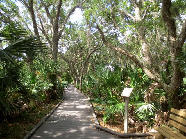 photo 2 板張り遊歩道 Boardwalk Trail