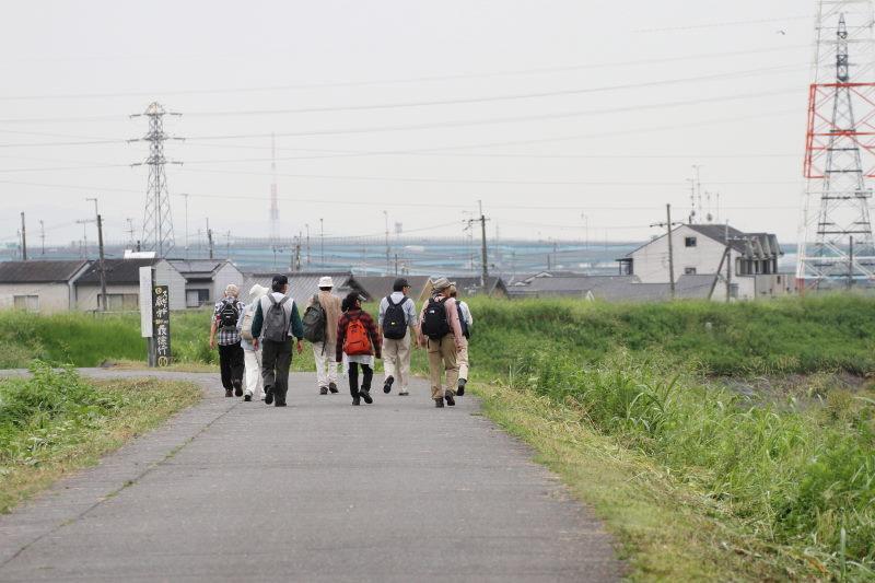 photo1 2015/08/20 ツバメのねぐら帰り Photo by 萬田