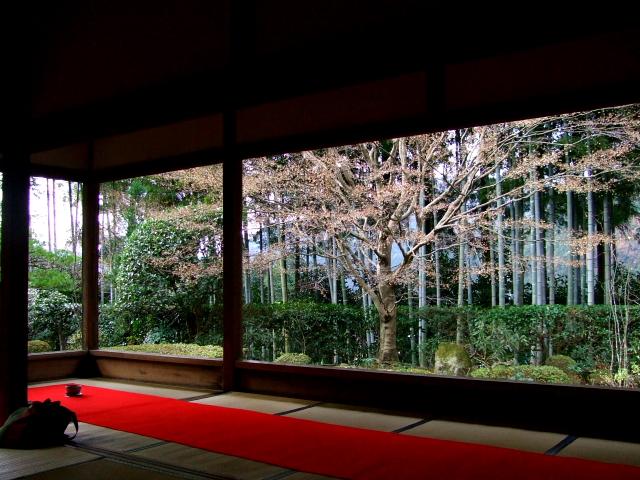 宝泉院 額縁の庭園 大原 京都 2007/12/14 Photo by kohyuh