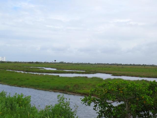 """Bio Lab Road"" (7景-7) メリット島国立野生動物保護区 メリット島 フロリダ 米国"