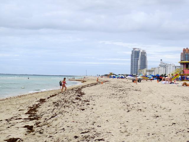 マイアミビーチに向かって (13景-6)